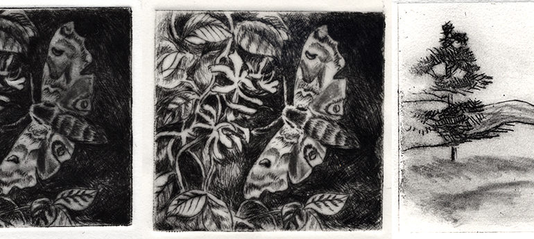 Drypoint & Monoprint with Kathleen Piercefield