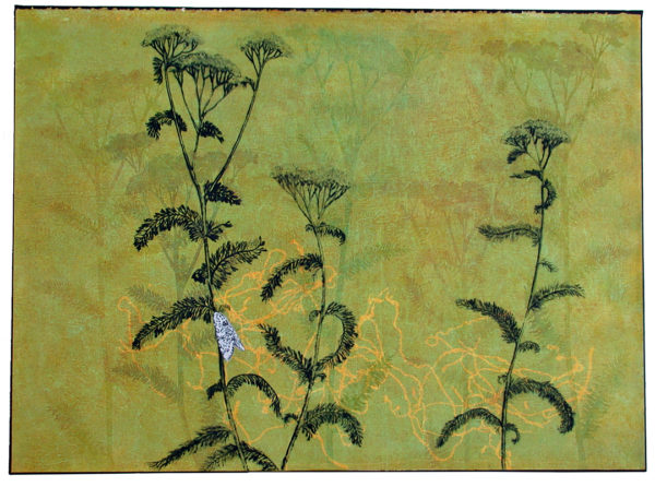 "Kathleen Piercefield's image ""Yarrow"" including drypoint elements."